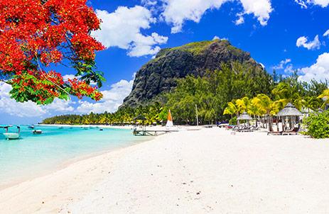 Holiday Showdown: Mauritius versus The Maldives