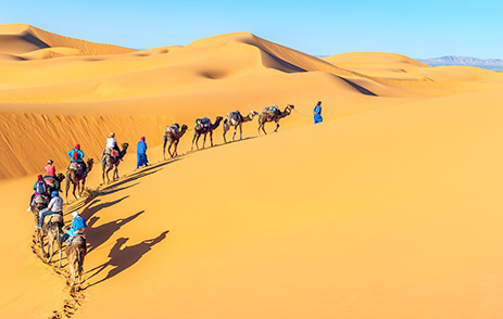 Line of travellers on camels in The Sahara, Morocco