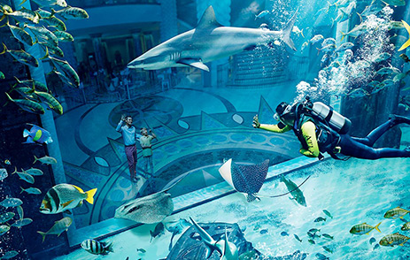 The Lost Chambers Aquarium inside Atlantis The Palm