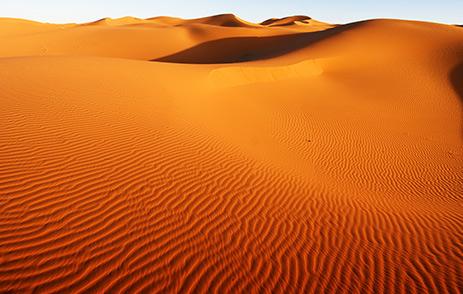 Golden sand dunes in the Sahara Desert